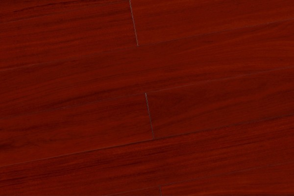 香脂木豆IT-06-1